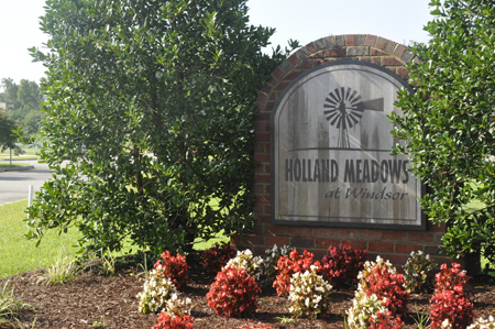 Holland Meadows